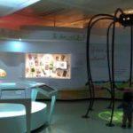 ハーグの子連れおすすめスポットー子ども博物館 kinderboekenmuseum